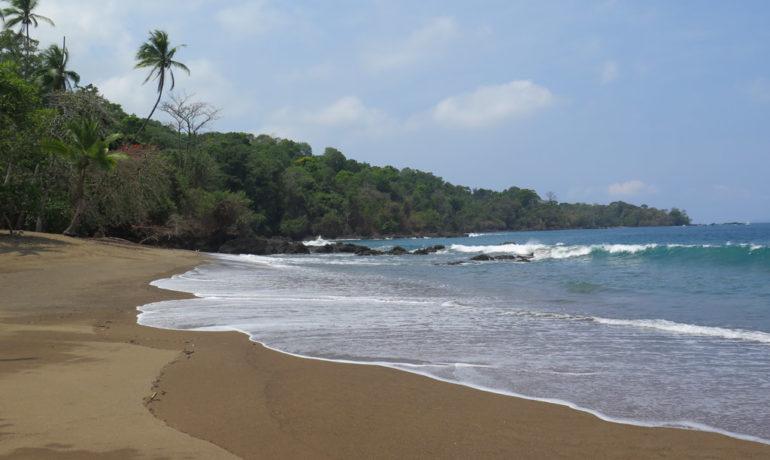 view of the beach in bahia drake in the osa peninsula costa rica