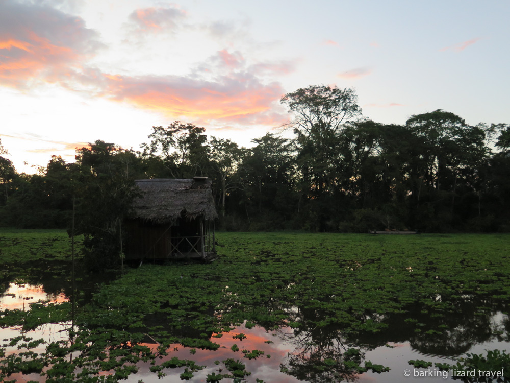 Photo of the sky at dusk in the northern Peruvian Amazon